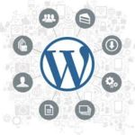 Wordpress infographic.